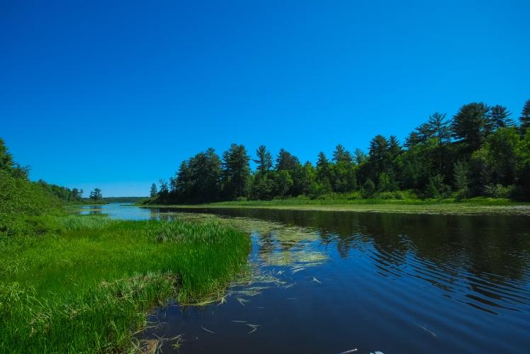 Allequash Lake_Joshua Mayer.jpg